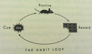 the-habit-loop
